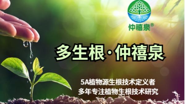 仲禧科技15803885411