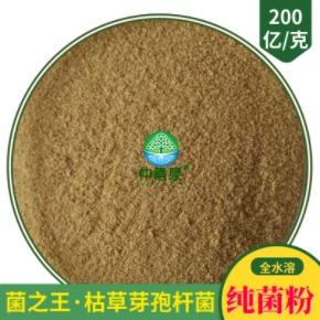 枯草芽孢杆菌(200亿/g·全水溶)