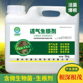 5kg透气生根剂