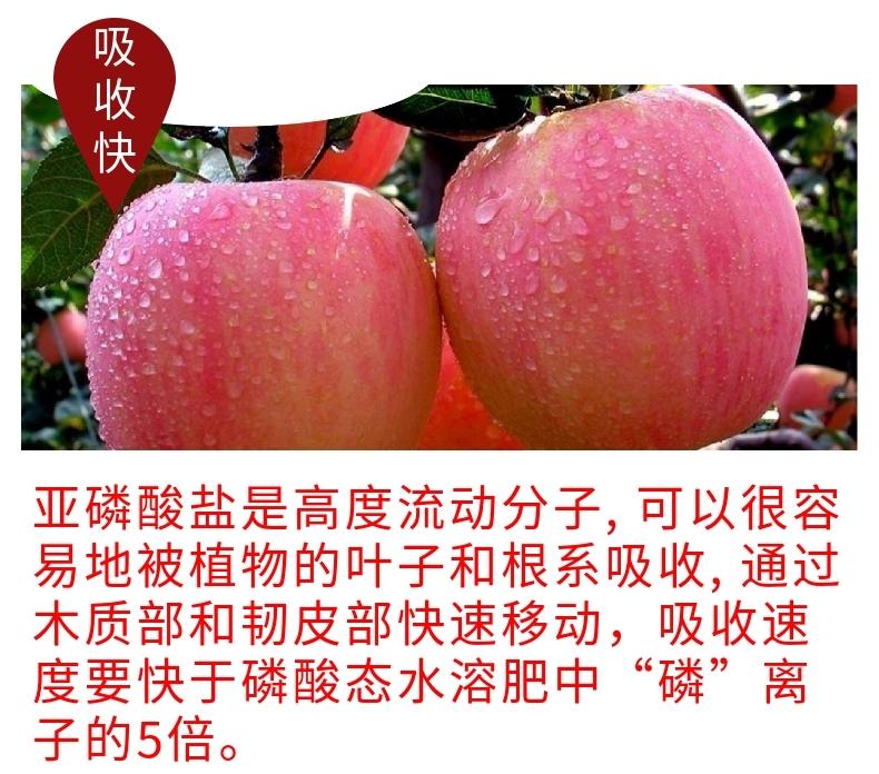 仲禧泉亚磷酸钾15803885411